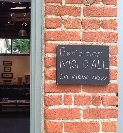 mold_all_1.jpg